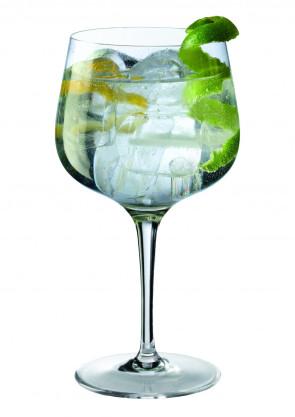 Calice Gin Tonic di Giona Premium Glass (6 pezzi)