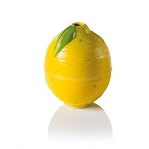 LIMONE: Stampo in policarbonato 3D magnetico ChocoFruit
