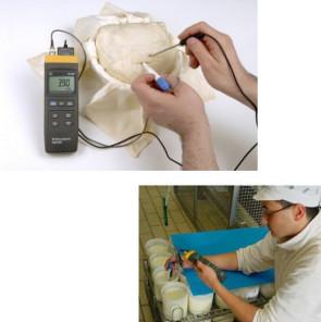 pHmetro digitale con elettrodo a penetrazione per lievito madre e marmellata