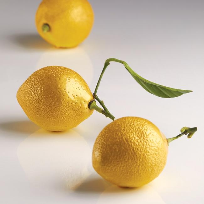 stampo silicone limone